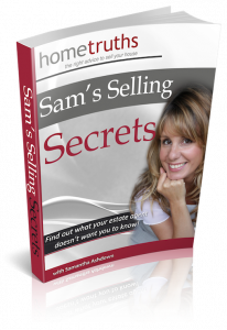Selling Secrets cover 3D